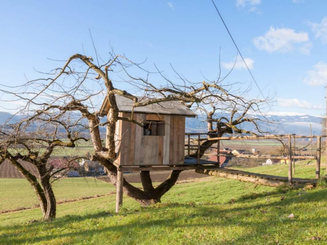 Fabricant De Cabane Dans Les Arbres Pour Enfants Ou Sur Pilotis En